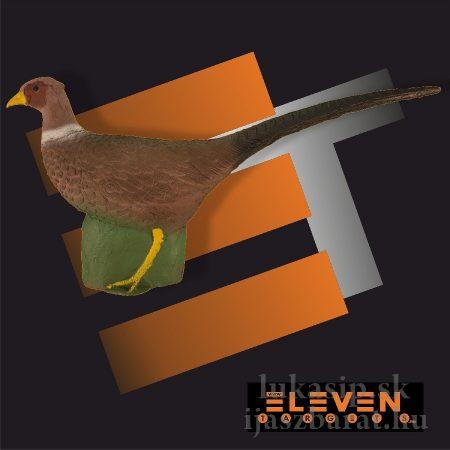 3D cél, fácán – Eleven